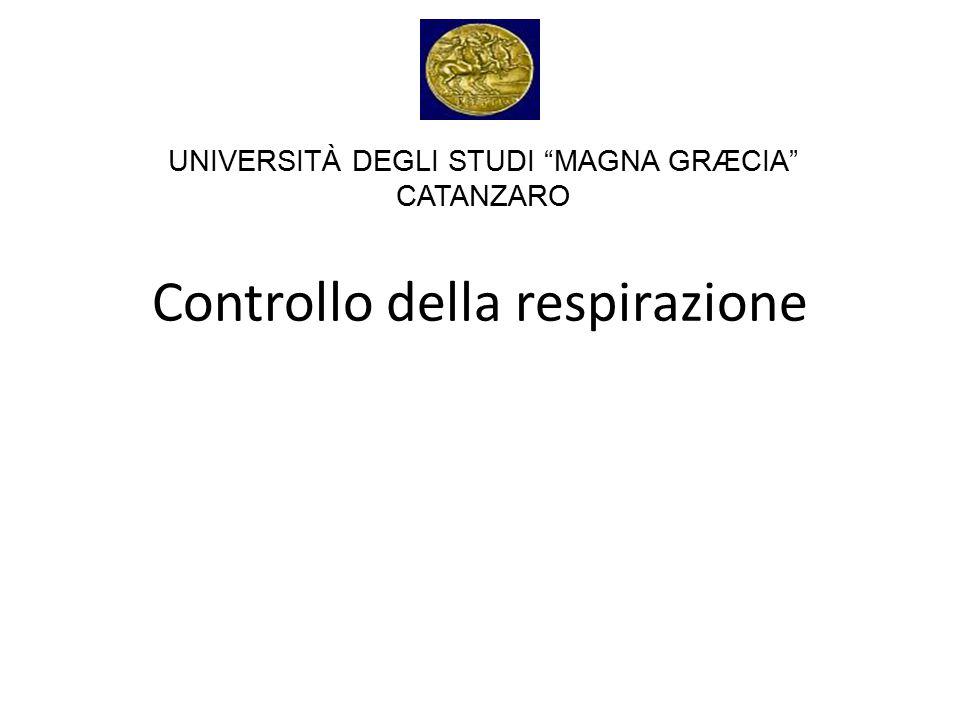 """Controllo della respirazione UNIVERSITÀ DEGLI STUDI """"MAGNA GRÆCIA"""" CATANZARO"""