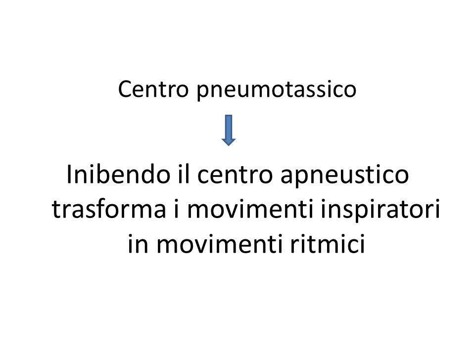 Centro pneumotassico Inibendo il centro apneustico trasforma i movimenti inspiratori in movimenti ritmici