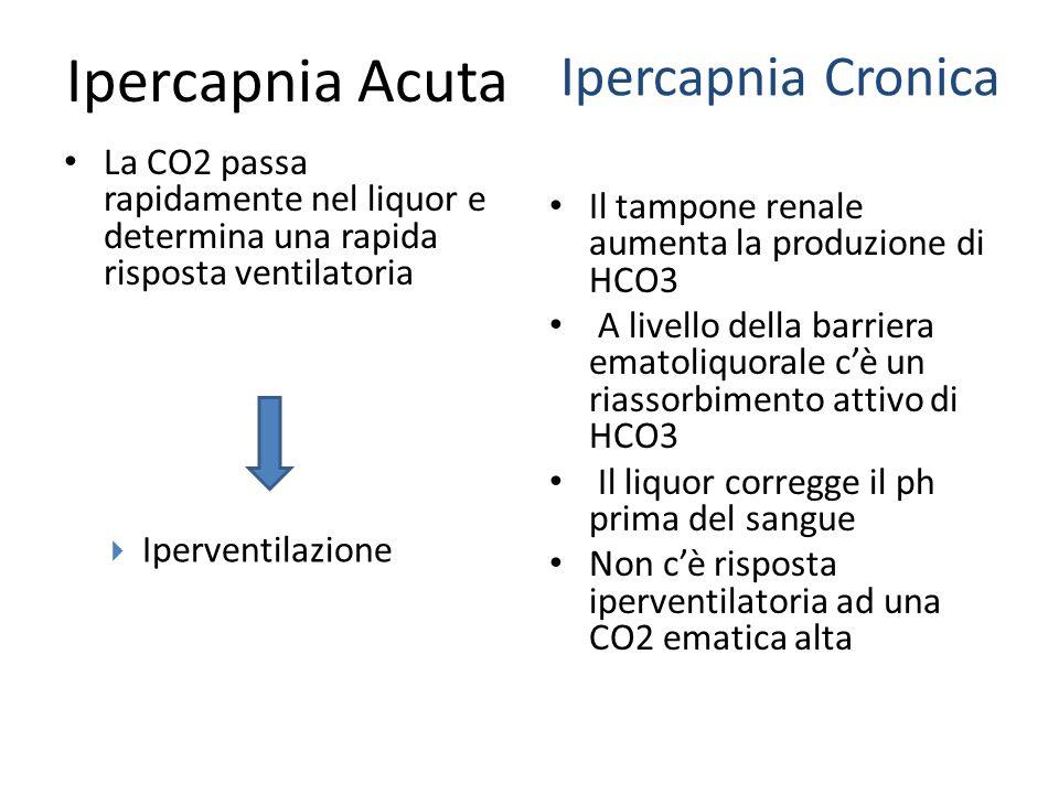Ipercapnia Acuta La CO2 passa rapidamente nel liquor e determina una rapida risposta ventilatoria Il tampone renale aumenta la produzione di HCO3 A li