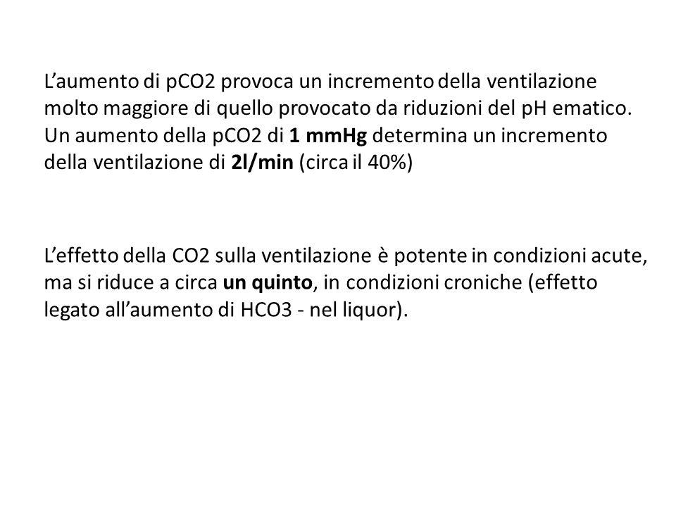 L'aumento di pCO2 provoca un incremento della ventilazione molto maggiore di quello provocato da riduzioni del pH ematico. Un aumento della pCO2 di 1