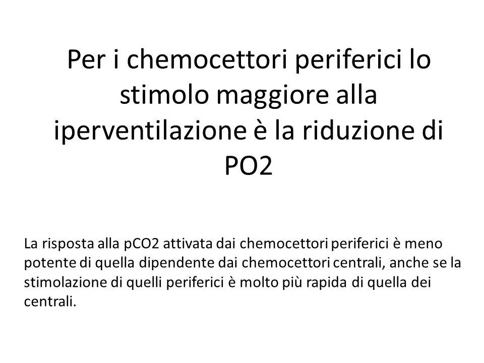 Per i chemocettori periferici lo stimolo maggiore alla iperventilazione è la riduzione di PO2 La risposta alla pCO2 attivata dai chemocettori periferi