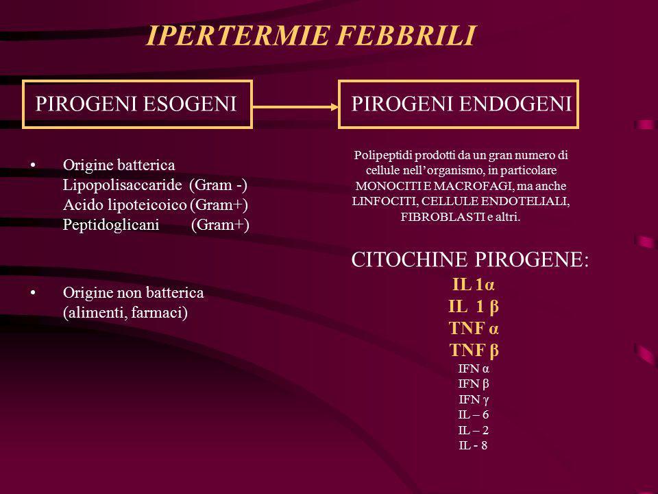 PIROGENI ESOGENIPIROGENI ENDOGENI Origine batterica Lipopolisaccaride (Gram -) Acido lipoteicoico (Gram+) Peptidoglicani (Gram+) Origine non batterica (alimenti, farmaci) Polipeptidi prodotti da un gran numero di cellule nell'organismo, in particolare MONOCITI E MACROFAGI, ma anche LINFOCITI, CELLULE ENDOTELIALI, FIBROBLASTI e altri.