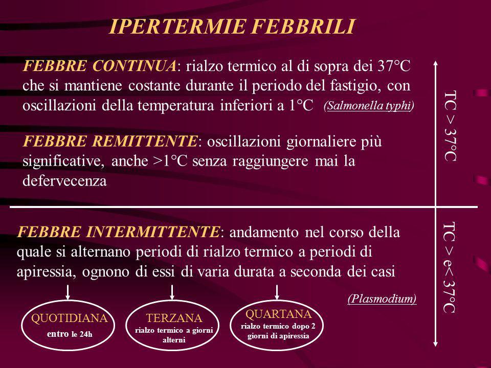 IPERTERMIE FEBBRILI FEBBRE CONTINUA: rialzo termico al di sopra dei 37°C che si mantiene costante durante il periodo del fastigio, con oscillazioni de