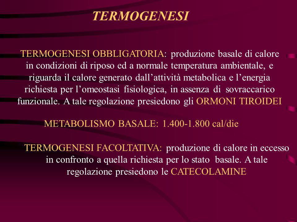 Ormoni tiroidei e Catecolamine (noradrenalina, adrenalina, insulina e glicocorticoidi) 1.Incremento del flusso degli ioni (Ca 2+,Na +,K + ) che determina un'accelerata attivazione/sintesi dell'ATPasi 2.Contrazione della muscolatura scheletrica (BRIVIDO): è un meccanismo involontario e viene anche denominato termogenesi contrazionale.Essa si attiva quando la temperatura ambientale si abbassa ad un limite non altrimenti compensabile.