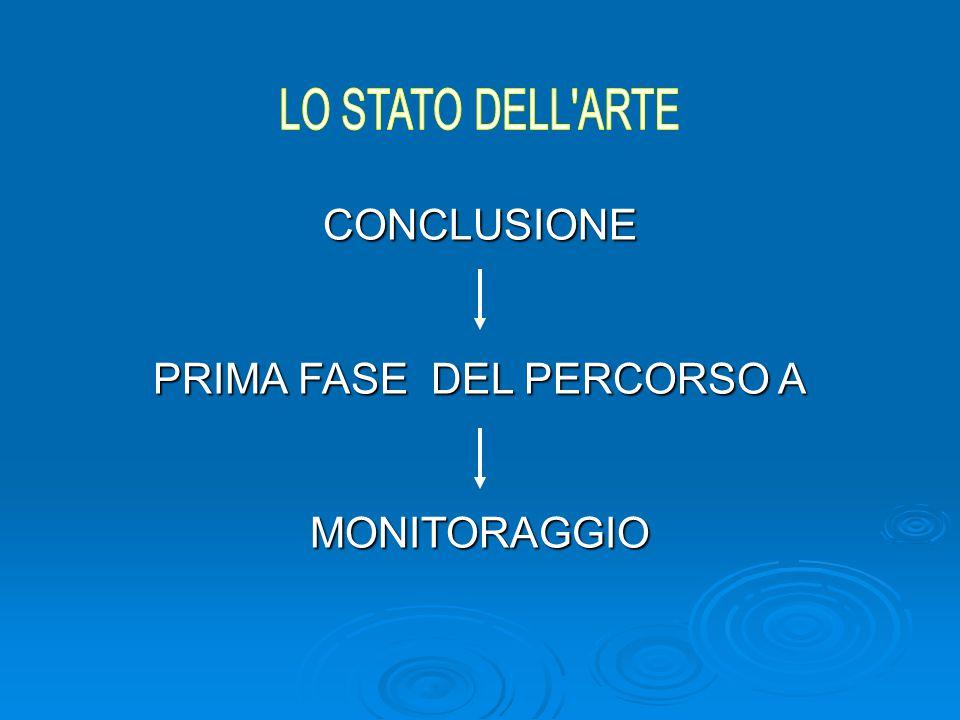 CONCLUSIONE MONITORAGGIO