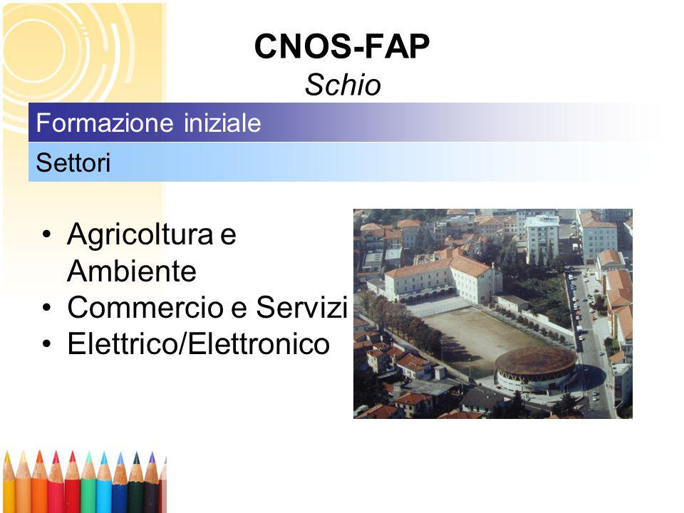 CNOS-FAP Schio Agricoltura e Ambiente Commercio e Servizi Elettrico/Elettronico Settori Formazione iniziale