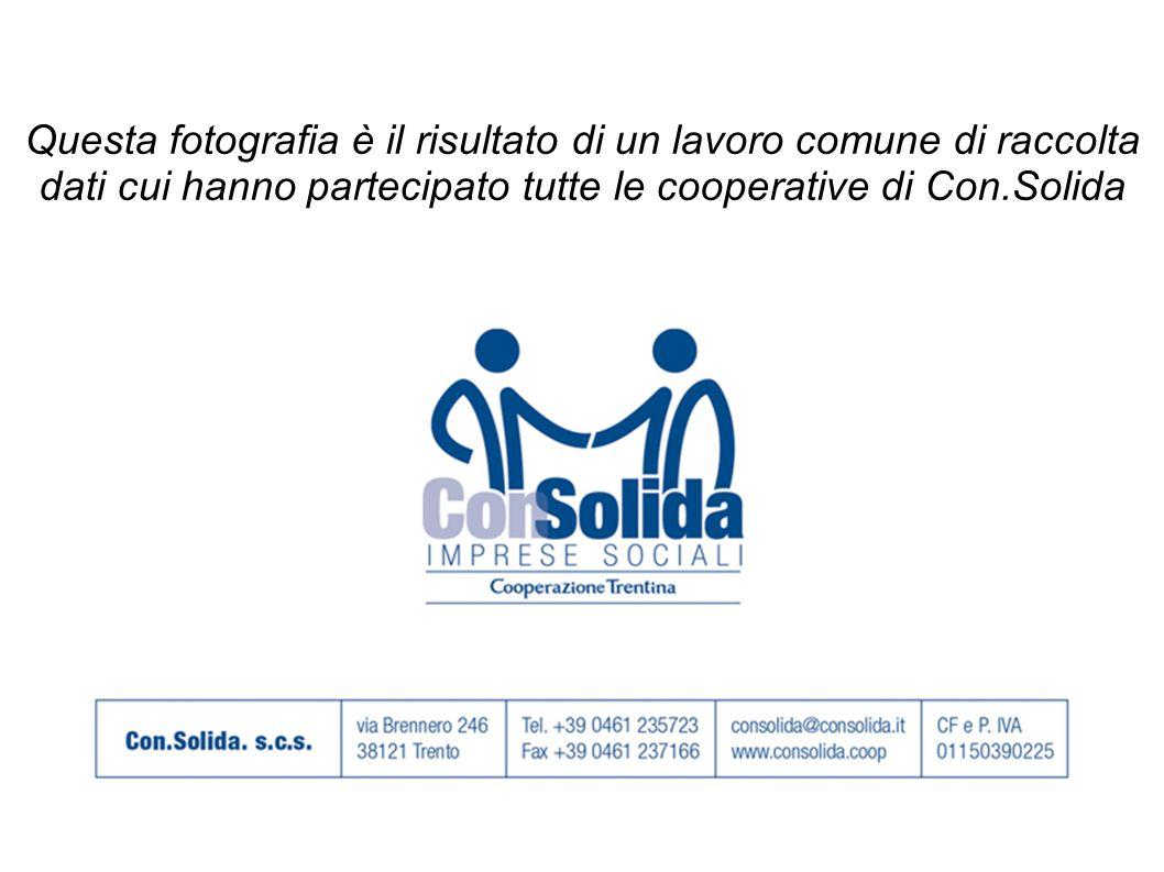 Questa fotografia è il risultato di un lavoro comune di raccolta dati cui hanno partecipato tutte le cooperative di Con.Solida