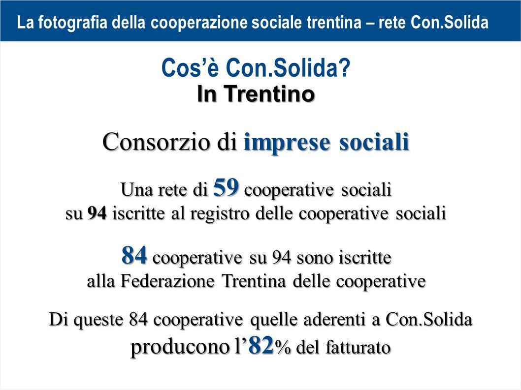 La fotografia della cooperazione sociale trentina – rete Con.Solida 3018 DISABILI nel 2010