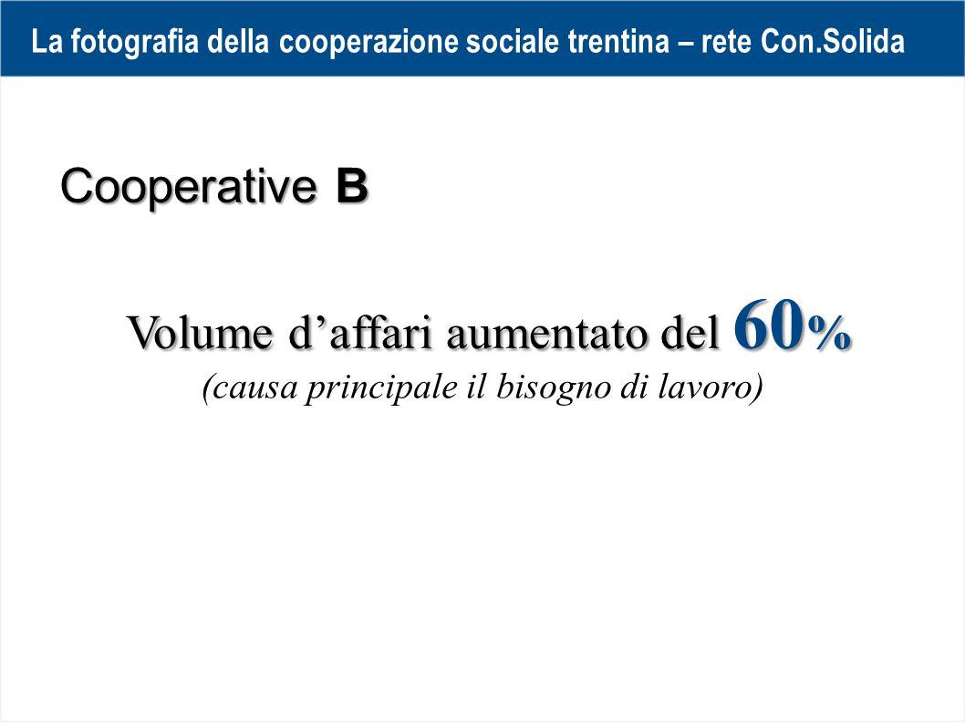 Volume d'affari aumentato del 60 % Cooperative B La fotografia della cooperazione sociale trentina – rete Con.Solida (causa principale il bisogno di lavoro)