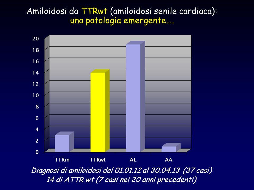 Diagnosi di amiloidosi dal 01.01.12 al 30.04.13 (37 casi) 14 di ATTR wt (7 casi nei 20 anni precedenti) Amiloidosi da TTRwt (amiloidosi senile cardiac