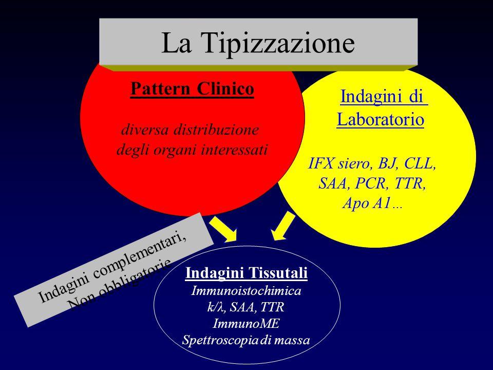 Indagini di Laboratorio IFX siero, BJ, CLL, SAA, PCR, TTR, Apo A1 … Pattern Clinico diversa distribuzione degli organi interessati Indagini Tissutali
