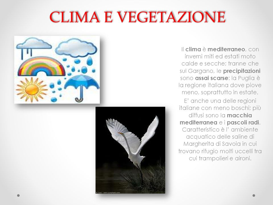 CLIMA E VEGETAZIONE Il clima è mediterraneo, con inverni miti ed estati moto calde e secche; tranne che sul Gargano, le precipitazioni sono assai scar