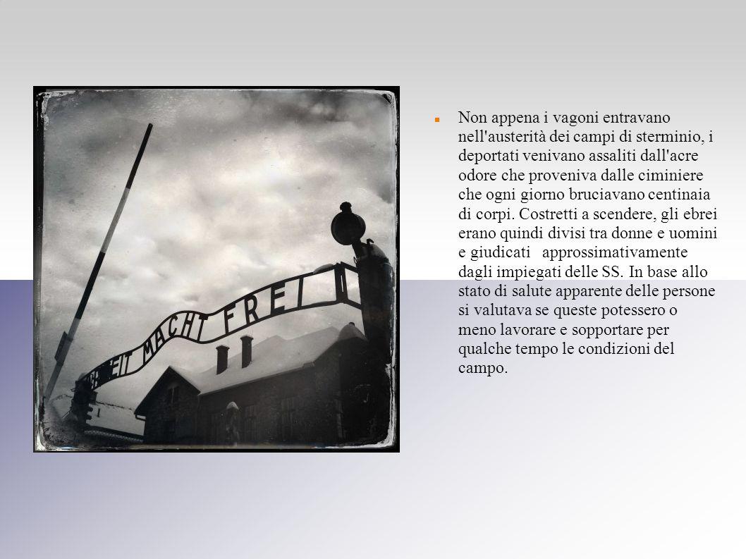 Non appena i vagoni entravano nell'austerità dei campi di sterminio, i deportati venivano assaliti dall'acre odore che proveniva dalle ciminiere che o
