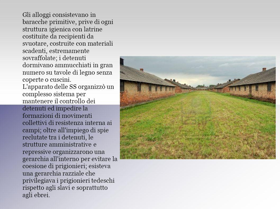 Gli alloggi consistevano in baracche primitive, prive di ogni struttura igienica con latrine costituite da recipienti da svuotare, costruite con mater