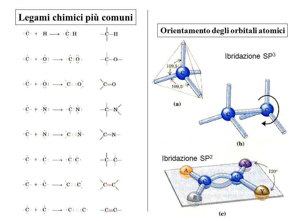 Legami chimici più comuni Orientamento degli orbitali atomici Ibridazione SP 3 Ibridazione SP 2