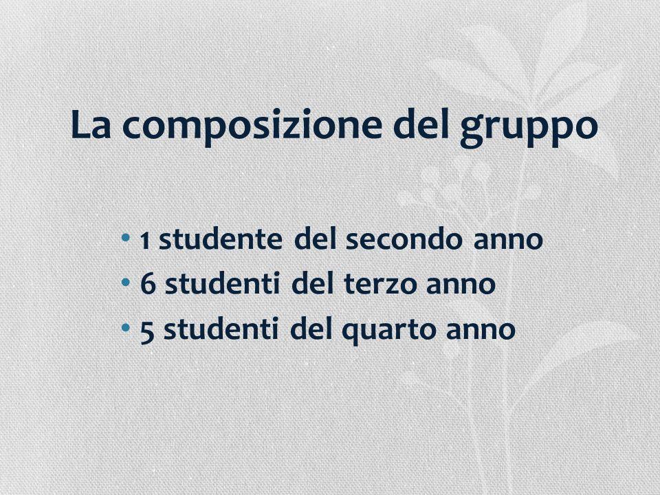 La composizione del gruppo 1 studente del secondo anno 6 studenti del terzo anno 5 studenti del quarto anno
