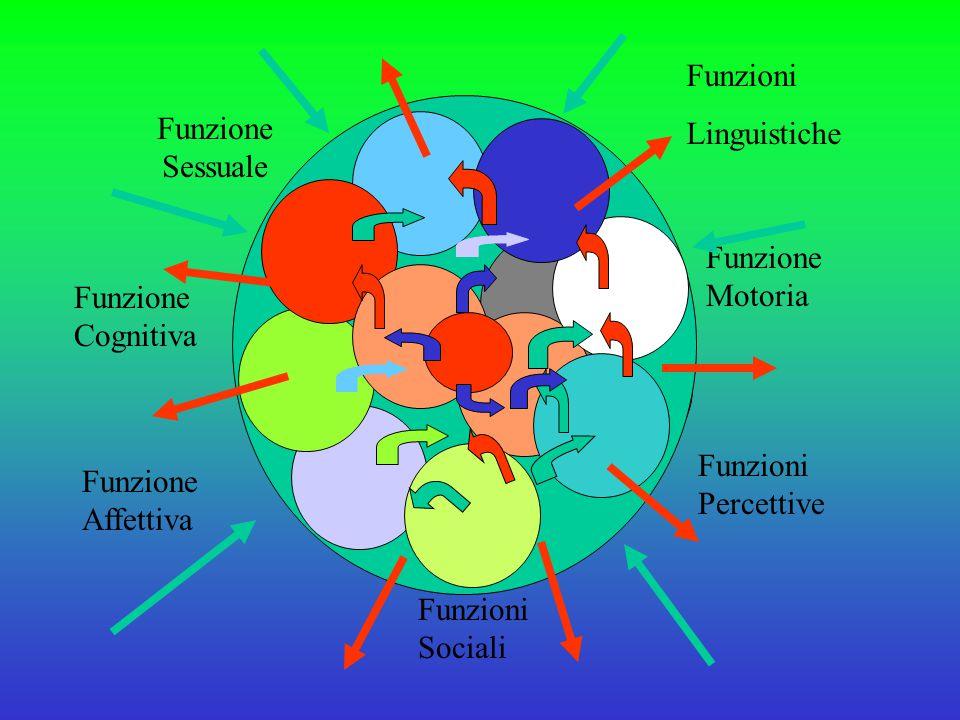 Funzione Motoria Funzione Affettiva Funzione Cognitiva Funzioni Percettive Funzioni Sociali Funzione Sessuale Funzioni Linguistiche