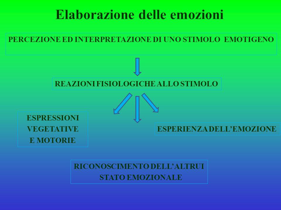 Elaborazione delle emozioni PERCEZIONE ED INTERPRETAZIONE DI UNO STIMOLO EMOTIGENO REAZIONI FISIOLOGICHE ALLO STIMOLO ESPRESSIONI VEGETATIVE E MOTORIE ESPERIENZA DELL'EMOZIONE RICONOSCIMENTO DELL'ALTRUI STATO EMOZIONALE