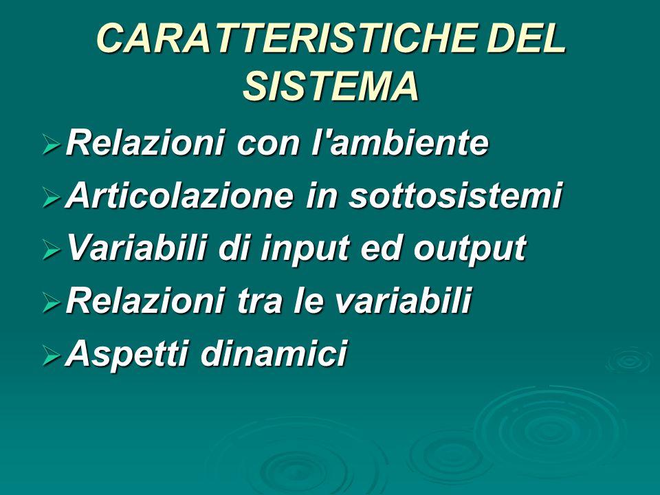 CARATTERISTICHE DEL SISTEMA  Relazioni con l'ambiente  Articolazione in sottosistemi  Variabili di input ed output  Relazioni tra le variabili  A
