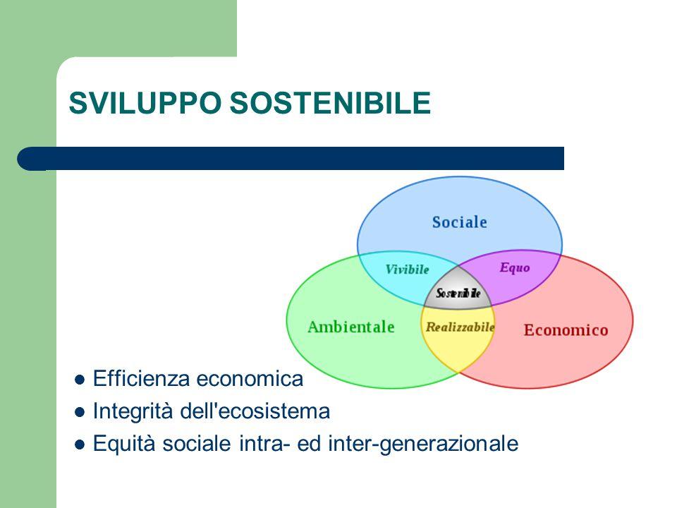 SVILUPPO SOSTENIBILE Efficienza economica Integrità dell ecosistema Equità sociale intra- ed inter-generazionale