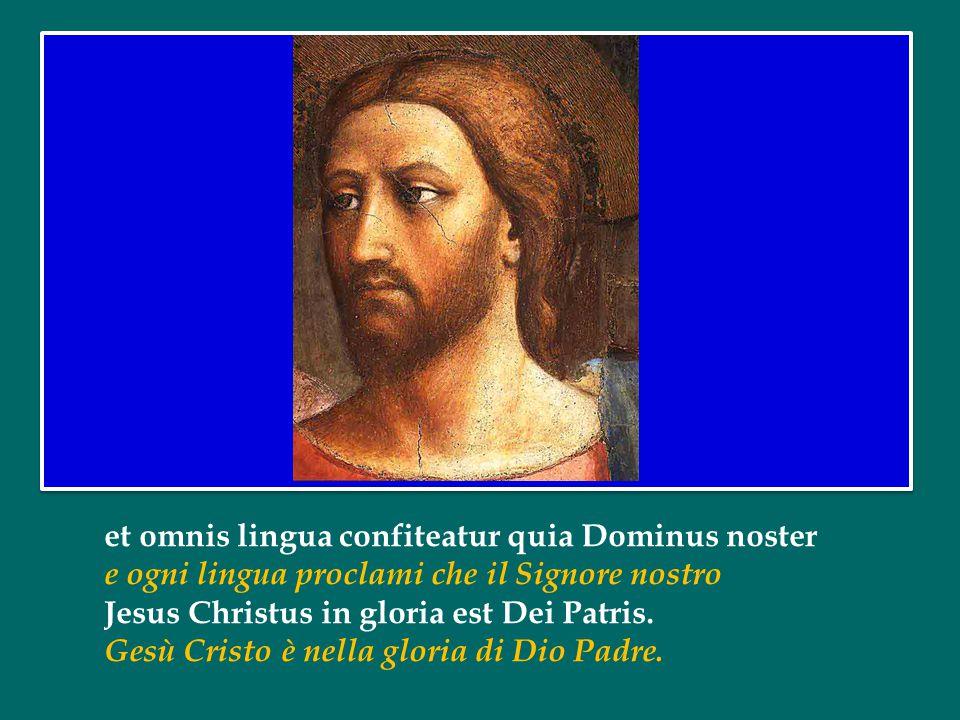 Jesu dulcis memoria dans vera cordis gaudia O Gesù, ricordo di dolcezza sorgente di forza vera al cuore Sed super mel et omnia eius dulcis praesentia.