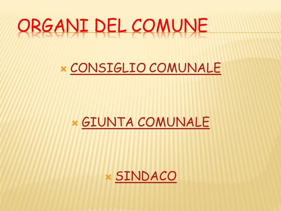  CONSIGLIO COMUNALE CONSIGLIO COMUNALE  GIUNTA COMUNALE GIUNTA COMUNALE  SINDACO SINDACO