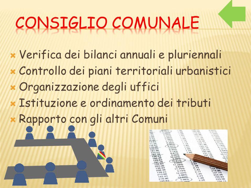  Verifica dei bilanci annuali e pluriennali  Controllo dei piani territoriali urbanistici  Organizzazione degli uffici  Istituzione e ordinamento dei tributi  Rapporto con gli altri Comuni