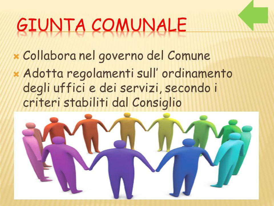  Collabora nel governo del Comune  Adotta regolamenti sull' ordinamento degli uffici e dei servizi, secondo i criteri stabiliti dal Consiglio