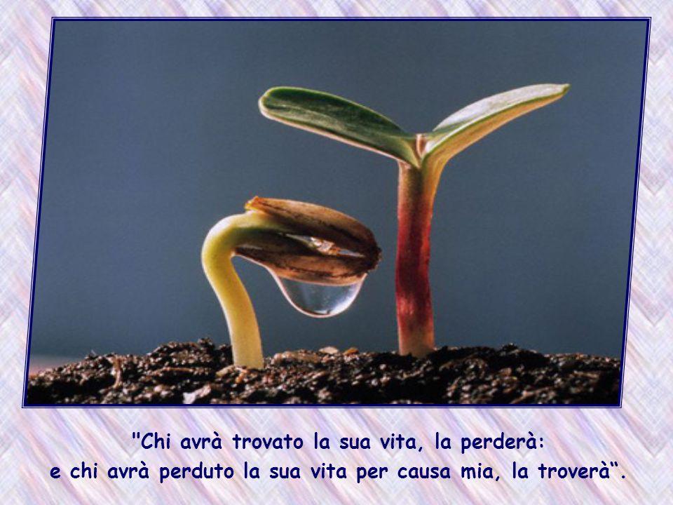 Fin da questa terra si può fare l esperienza che nel dono di se stessi, nell amore vissuto, cresce in noi la vita.