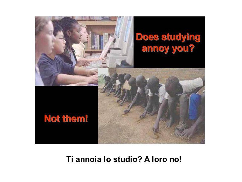 Ti annoia lo studio? A loro no!