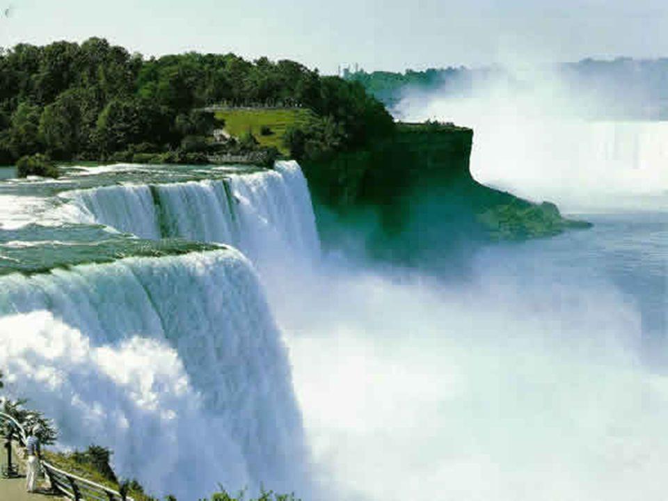 Credo che avere la terra e non rovinarla sia la più bella forma d'arte che si possa desiderare Andy Warhol