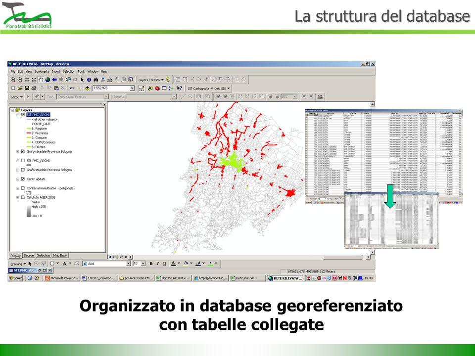 Organizzato in database georeferenziato con tabelle collegate La struttura del database