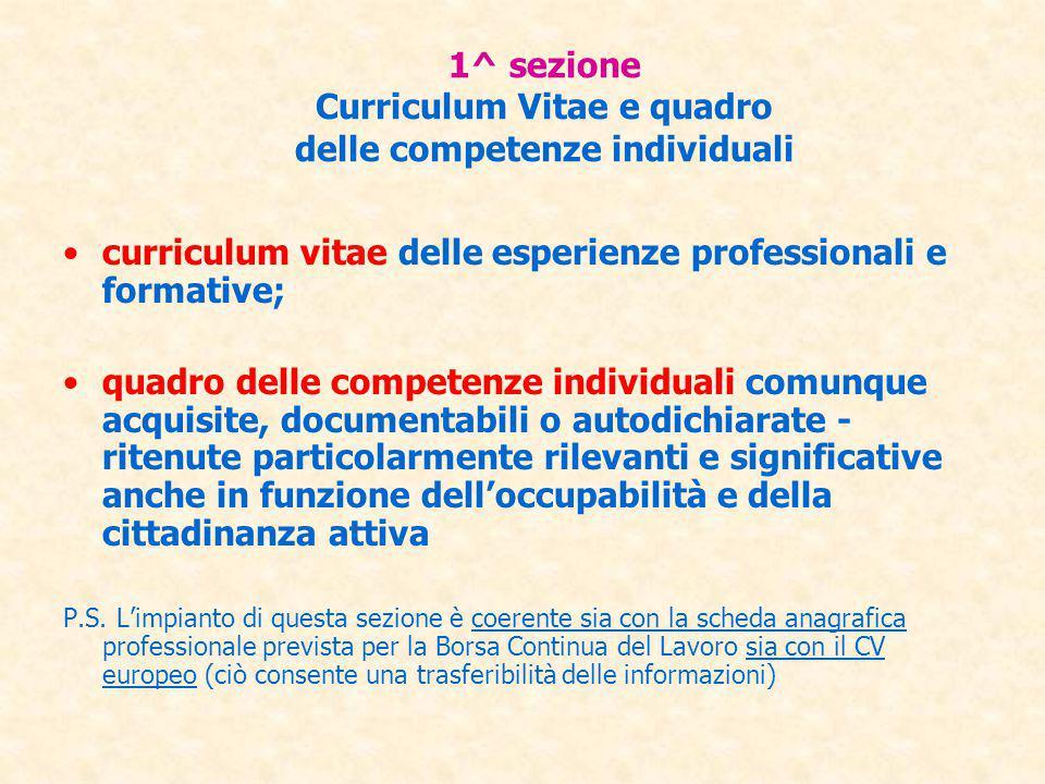 1^ sezione Curriculum Vitae e quadro delle competenze individuali curriculum vitae delle esperienze professionali e formative; quadro delle competenze
