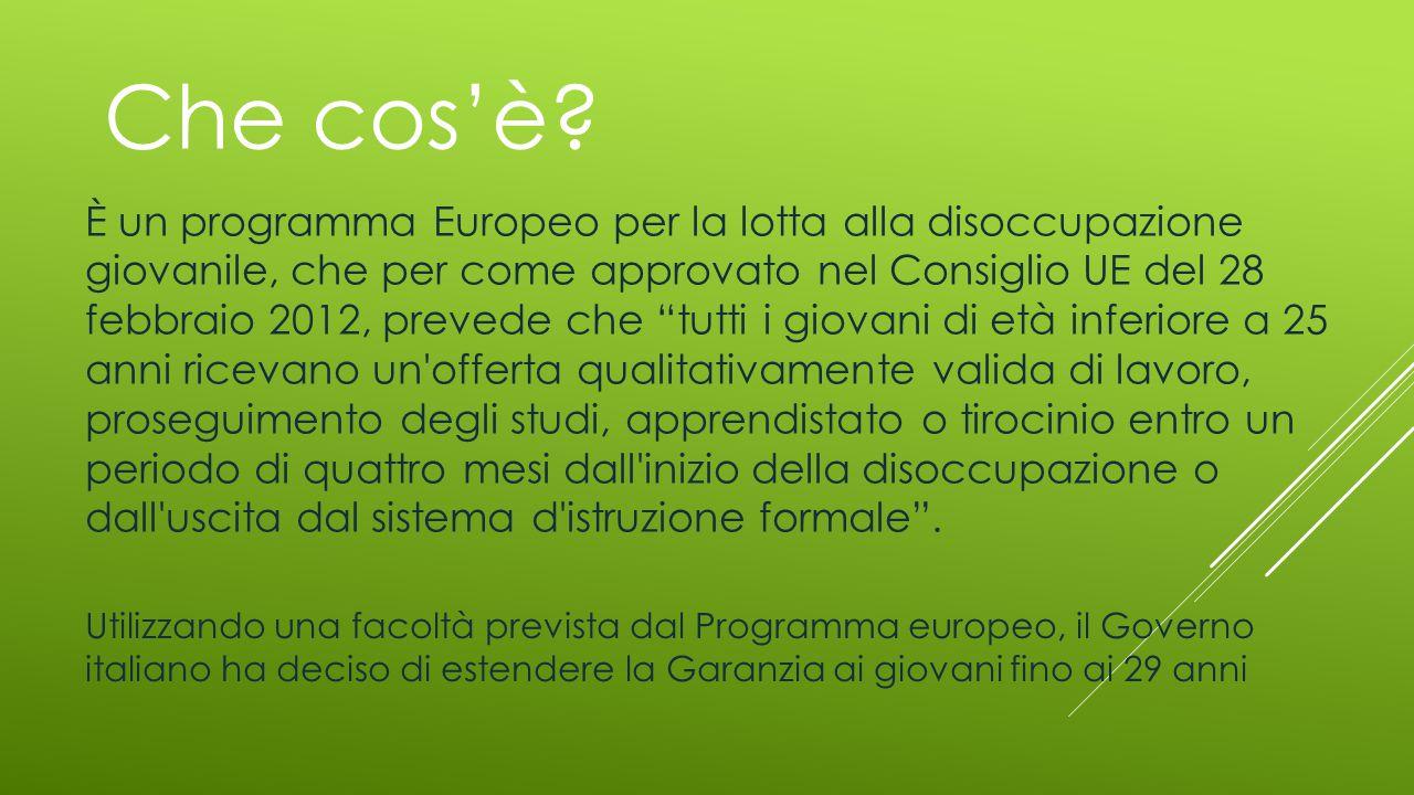 Che cos'è? È un programma Europeo per la lotta alla disoccupazione giovanile, che per come approvato nel Consiglio UE del 28 febbraio 2012, prevede ch