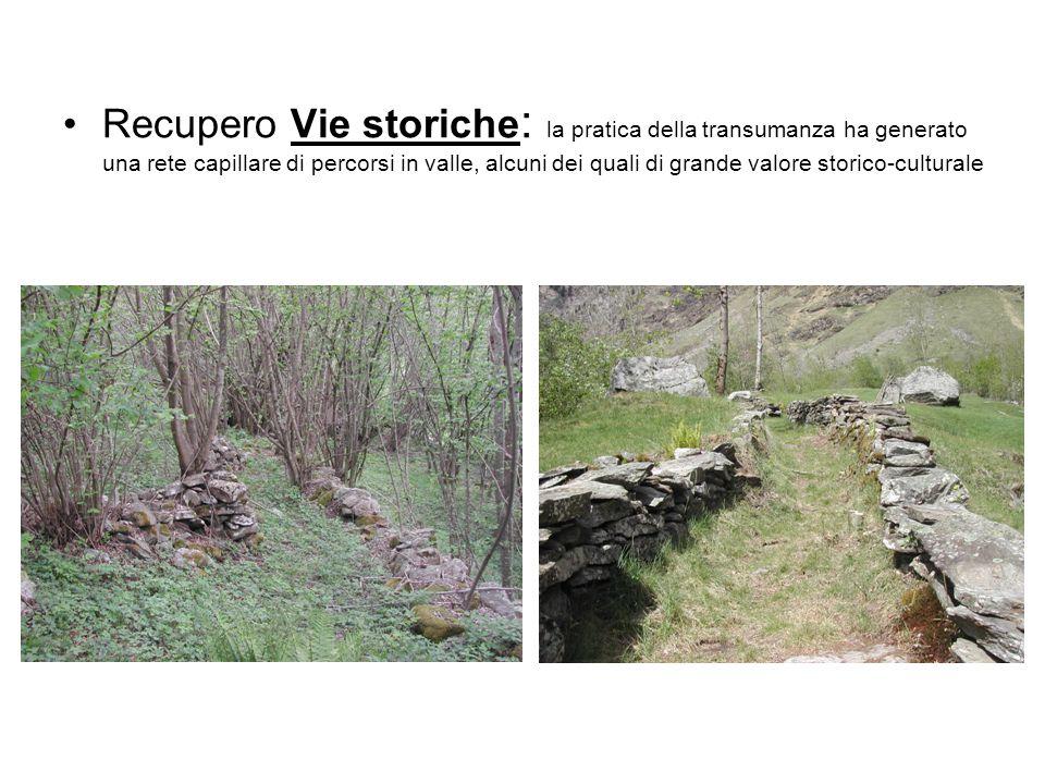 Recupero Vie storiche : la pratica della transumanza ha generato una rete capillare di percorsi in valle, alcuni dei quali di grande valore storico-cu