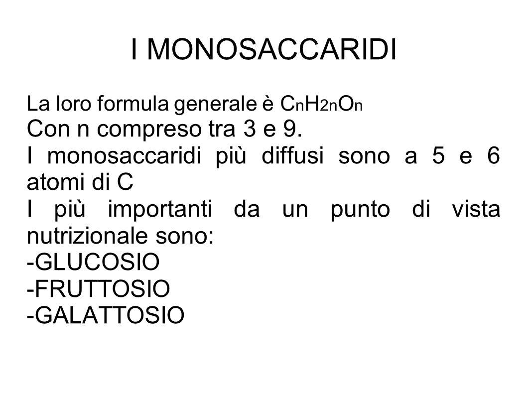 I MONOSACCARIDI La loro formula generale è C n H 2n O n Con n compreso tra 3 e 9.