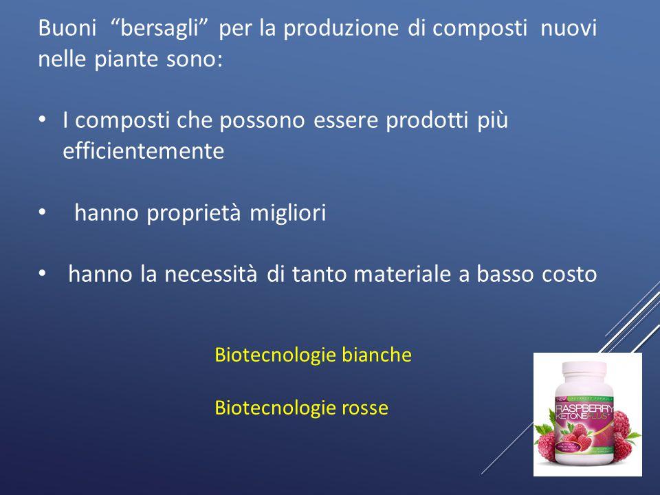 """11 Buoni """"bersagli"""" per la produzione di composti nuovi nelle piante sono: I composti che possono essere prodotti più efficientemente hanno proprietà"""
