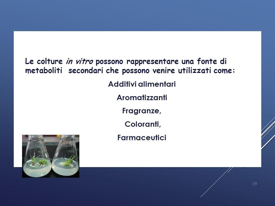  Le colture in vitro possono rappresentare una fonte di metaboliti secondari che possono venire utilizzati come:  Additivi alimentari  Aromatizzant