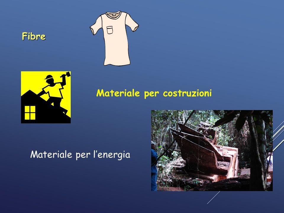 Fibre Materiale per costruzioni 3 Materiale per l'energia