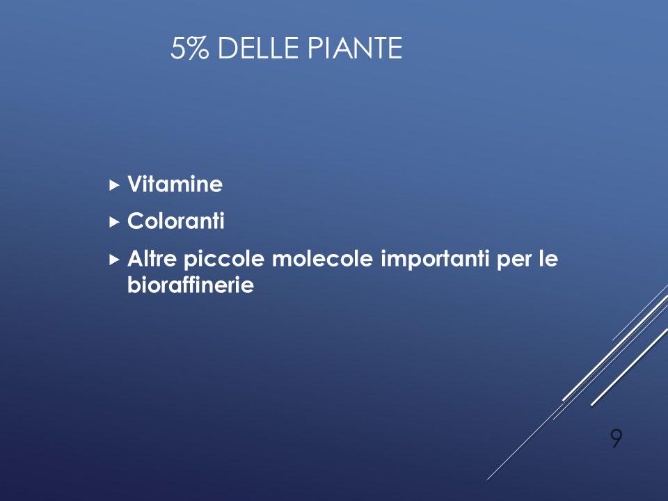 5% DELLE PIANTE  Vitamine  Coloranti  Altre piccole molecole importanti per le bioraffinerie 9