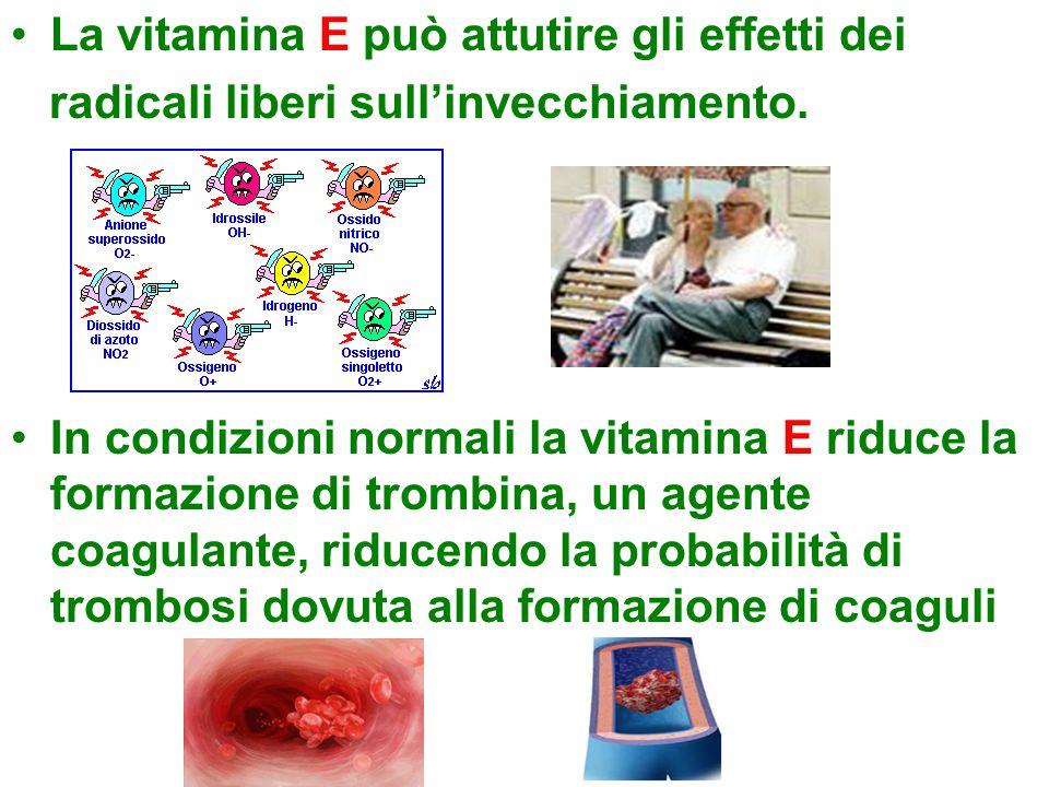 La vitamina E può attutire gli effetti dei radicali liberi sull'invecchiamento. In condizioni normali la vitamina E riduce la formazione di trombina,