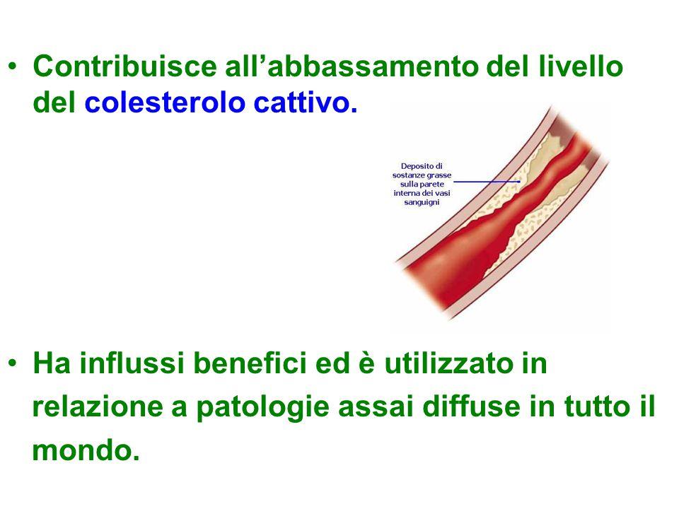 Contribuisce all'abbassamento del livello del colesterolo cattivo. Ha influssi benefici ed è utilizzato in relazione a patologie assai diffuse in tutt