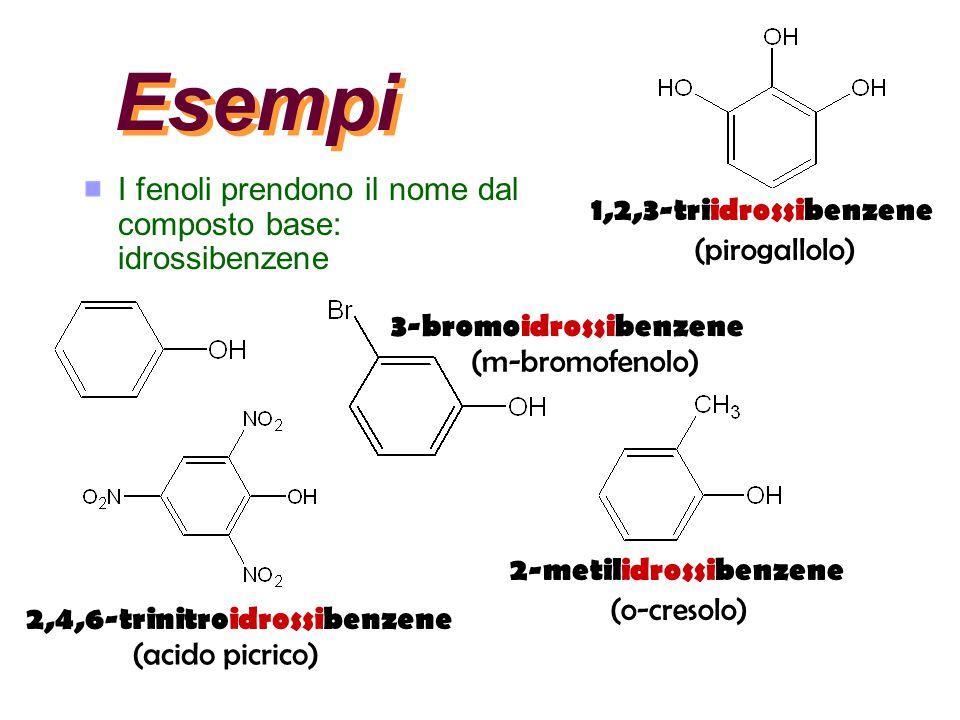 Esempi I fenoli prendono il nome dal composto base: idrossibenzene 3-bromoidrossibenzene (m-bromofenolo) 2,4,6-trinitroidrossibenzene (acido picrico)