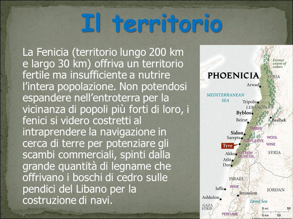 Il territorio La Fenicia (territorio lungo 200 km e largo 30 km) offriva un territorio fertile ma insufficiente a nutrire l'intera popolazione. Non po