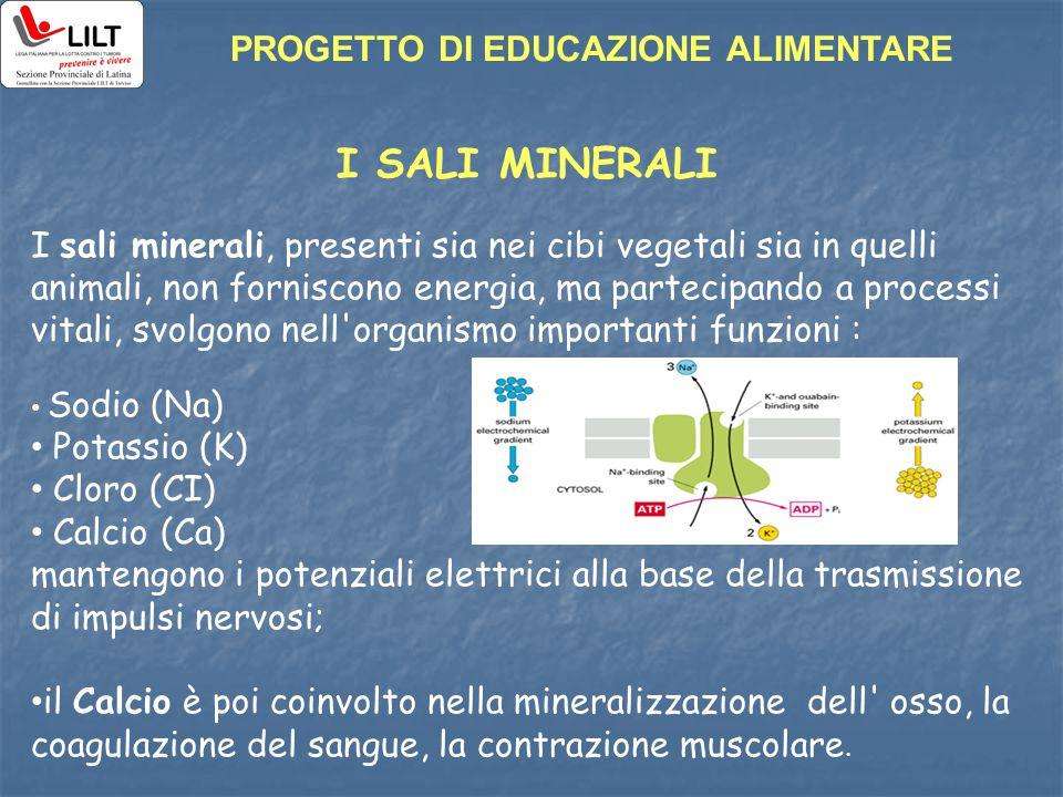 I SALI MINERALI I sali minerali, presenti sia nei cibi vegetali sia in quelli animali, non forniscono energia, ma partecipando a processi vitali, svol