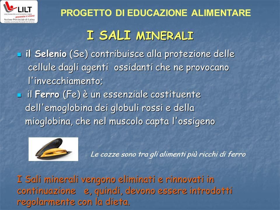 I SALI MINERALI il Selenio (Se) contribuisce alla protezione delle il Selenio (Se) contribuisce alla protezione delle cellule dagli agenti ossidanti c