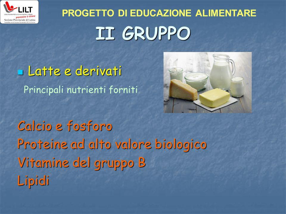 II GRUPPO Latte e derivati Latte e derivati Calcio e fosforo Proteine ad alto valore biologico Vitamine del gruppo B Lipidi Principali nutrienti forni
