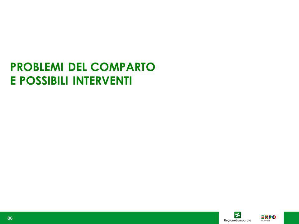 PROBLEMI DEL COMPARTO E POSSIBILI INTERVENTI 86