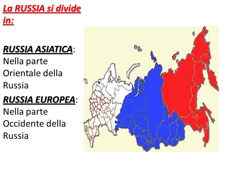 La RUSSIA si divide in: RUSSIA ASIATICA RUSSIA ASIATICA: Nella parte Orientale della Russia RUSSIA EUROPEA RUSSIA EUROPEA: Nella parte Occidente della Russia