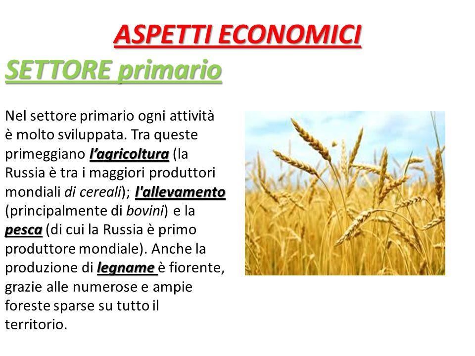 SETTORE primario l'agricoltura l allevamento pesca legname Nel settore primario ogni attività è molto sviluppata.